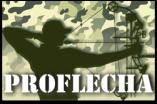 logotipo-proflecha